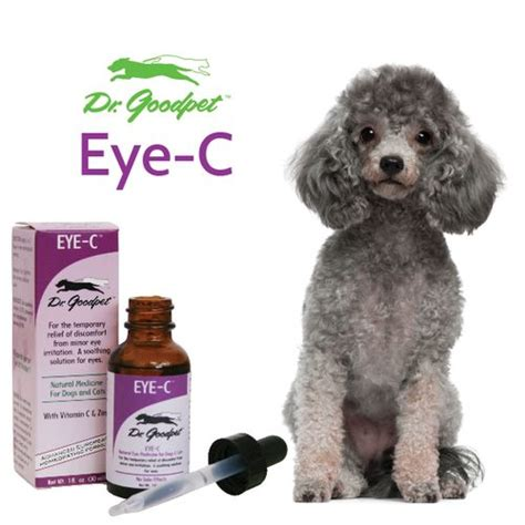 can you use human eye drops on dogs 1000 images about dr goodpet homeopathic remedies on medicine the