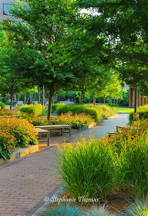 new garden landscaping greensboro nc photograph designing