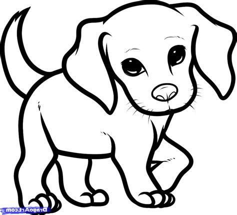 coloring pages puppy drawings clipart line drawing