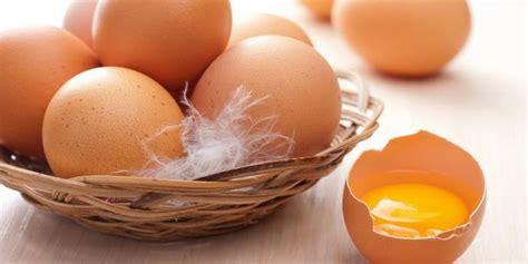 Pupuk Kalsium Cantik kegunaan unik kulit telur yang jarang diketahui merdeka