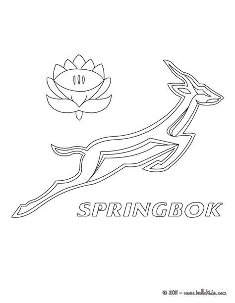 coloring pages springbok rugby team coloring page 30 9u9 m9n jpg 820 215 1060