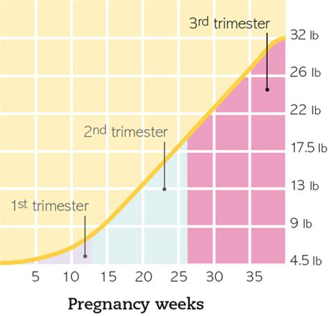 weight loss 3rd trimester weight loss during glandular fever dirtyposts