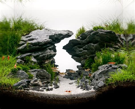 Aquascaping With Rocks by 25 Best Aquascaping Ideas On