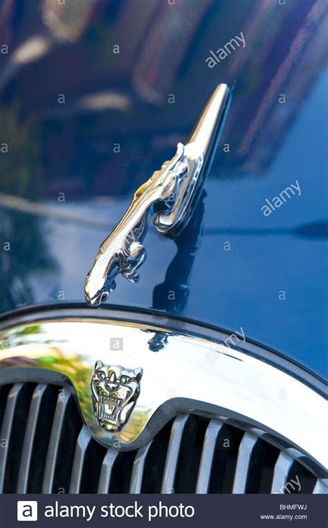 jaguar symbolism jaguar symbol