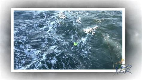 public boat r rudee inlet virginia beach fishing boat charters rudee inlet youtube