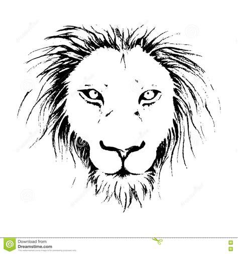 imagenes de leones blanco y negro ejemplo del dibujo de la cara del le 243 n en la l 237 nea arte