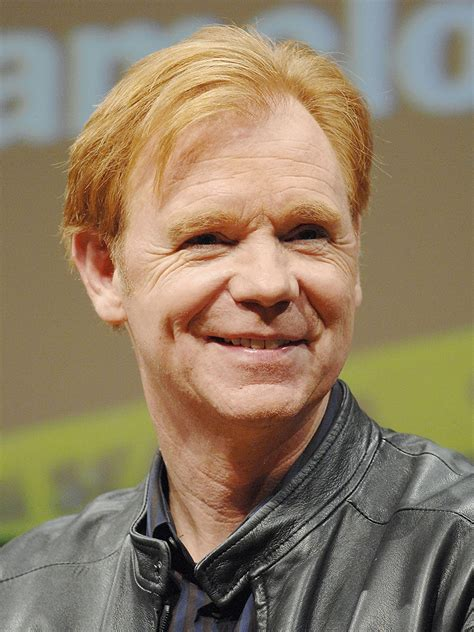 david caruso biography celebrity facts and awards david caruso list of movies and tv shows tv guide