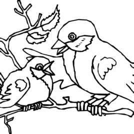doctor bird coloring page bird coloring pages dr odd in style kids drawing and