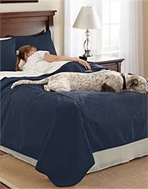 best comforter for dog hair 1000 ideas about dog bed covers on pinterest cheap dog