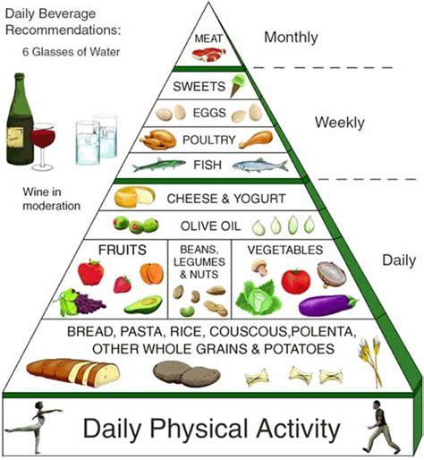 alimenti vegetali proteici le proteine gli alimenti proteici i lipidi o grassi i