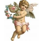 1000  Images About Angels And Cherubs On Pinterest