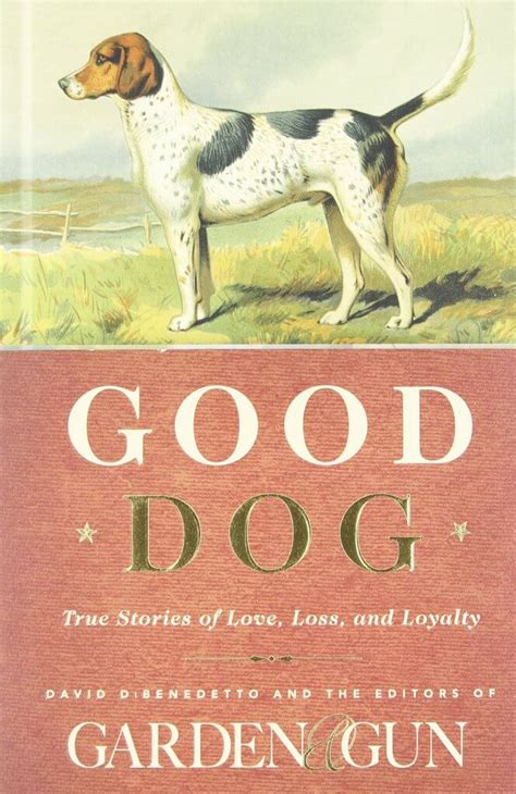 top dogs portraits and stories books the 50 best self help books of 2014