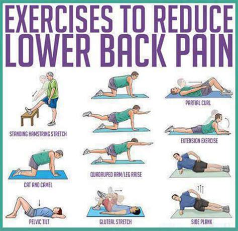 Safe Exercises For Lower Back Exercises To Reduce Lower Back Healthy Fitness
