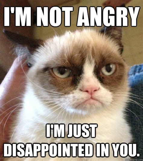 Disappointed Meme - i m not angry i m just disappointed in you not amused
