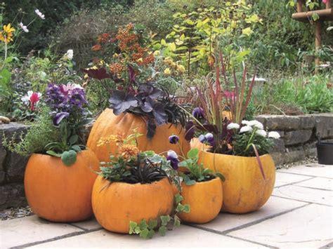 Pumpkin Planter by Make A Pumpkin Planter Gardening