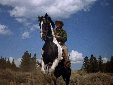 the greatest horses in western cinema ride tv unbridled paint joe cochise