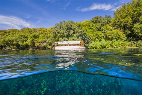 glass bottom boat texas explore spring lake the meadows center for water and the
