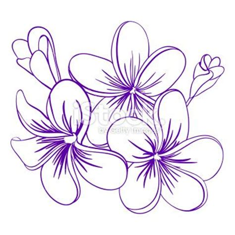 frangipani tattoos designs free 1000 ideas about tropical flower tattoos on