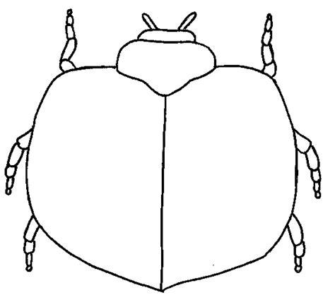 Ie8 Outline Bug by The Grouchy Ladybug Math