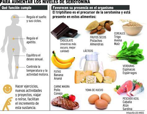 alimentos serotonina serotonina en el cerebro related keywords serotonina en