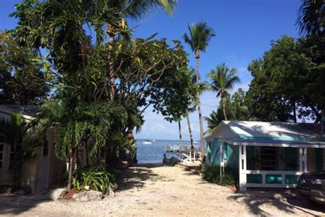 20160210 141748 Large Jpg Picture Of The Pelican Key Pelican Key Largo Cottages
