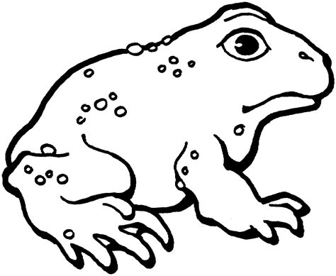 coloring pages frog and toad free printable toad coloring pages for kids