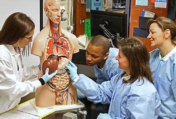 biomedical engineer jobs search biomedical engineer job biomedical engineering check career opportunities scope