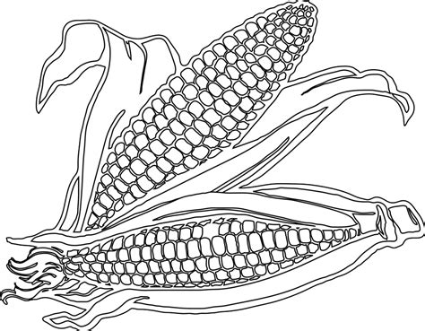 corn stalk pictures to color free coloring pages on art