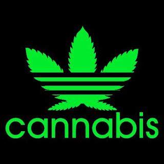 adidas reggae wallpaper pin adidas cannabis wallpaper reggae colors hd rasta on