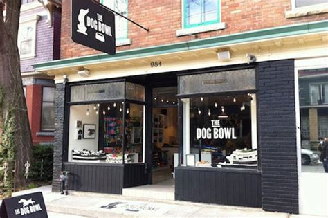 best store the best pet stores in toronto