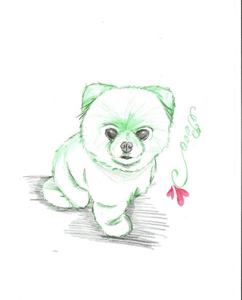 Coloring Pages Of Boo The Dog | boo dog 4 by aoiayano on deviantart