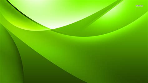 lime green wall lime green wallpaper wallpapersafari
