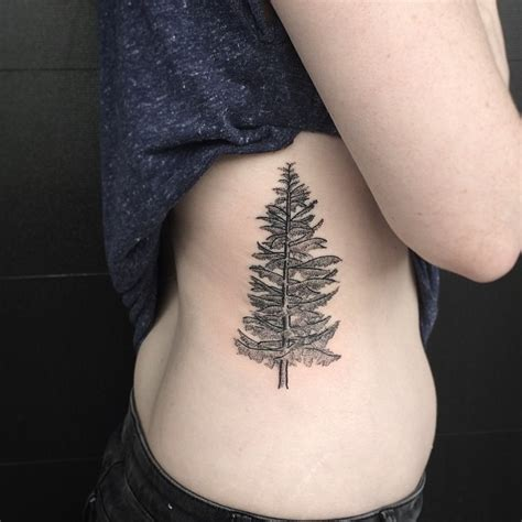 pine tattoo pine tree tattoos designs ideas and meaning tattoos for you