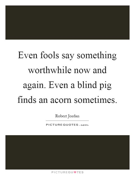 Even A Blind Pig even fools say something worthwhile now and again even a
