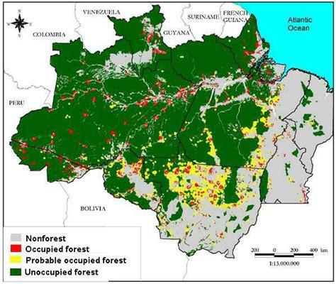 Puzzle Kayu Persegi Binatang Hutan creepy 10 negara yang memiliki hutan terluas keepo