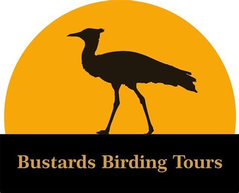 bustards birding tours johannesburg south africa