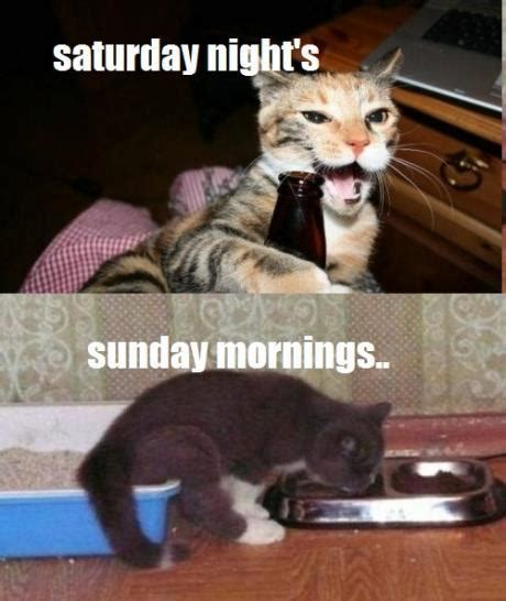 Saturday Memes 18 - saturday nights sunday mornings funny pictures
