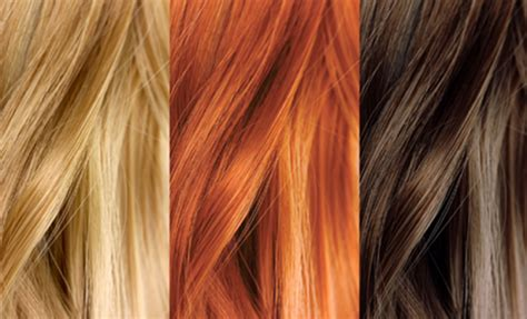 Type Of Hair Color by Facts About Hair Most Don T Black Hair Style