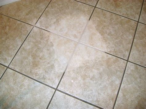 rog bathtub cleaner 17 best images about tile designs on pinterest shower tiles mosaics and travertine