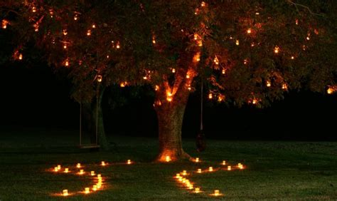 tree lihgt guys marriage lights up the the bandits