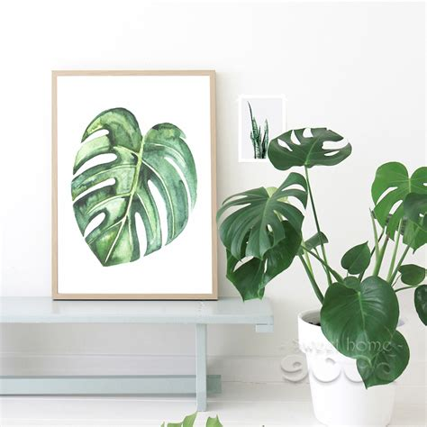 Walldecor Tropical Leaves Daun Monstera 3 Watercolor Tropical Plant Leaves Canvas Print Poster