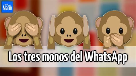 imagenes whatsapp monos los tres monos del whatsapp youtube