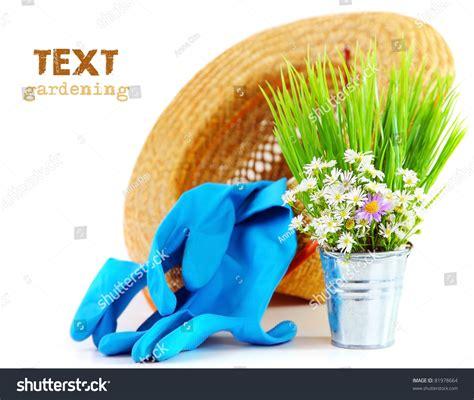 stock photo gardening tools isolated on white background gardening tools with fresh flowers isolated on white