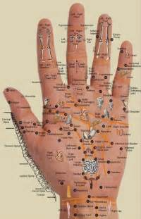 Vasundhra health accupressure every body part is in