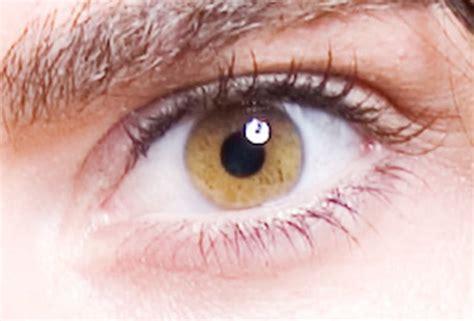 yellow eye color with yellow eye color www pixshark images