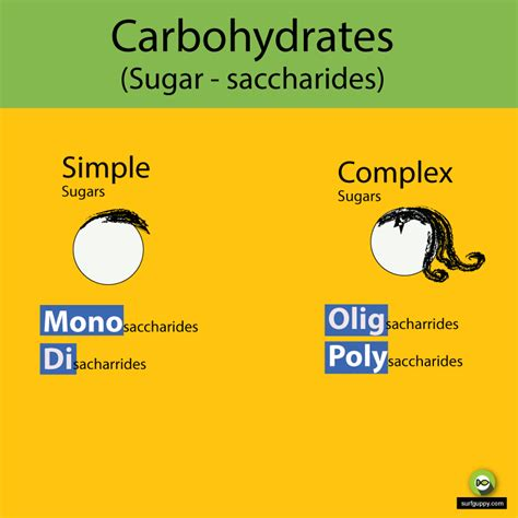 carbohydrates and sugar carbohydrates and sugar surfguppy chemistry made easy