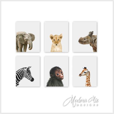 Safari Nursery Decor Zoo Animals Nursery Decor Baby Nursery Zoo Animal Nursery Decor