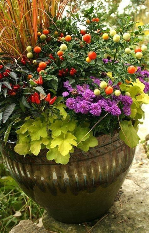 fall container garden plant list  kale  ornamental