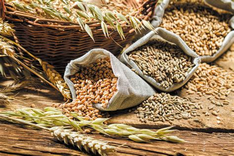 whole grains harvard 6 suggestions for adding whole grains to your diet