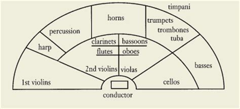 sections of the orchestra sections of the orchestra